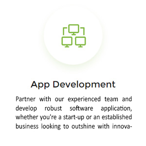 03_app-development_design-insight